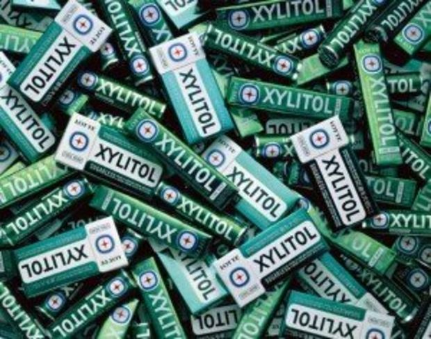 Pet poison hotlines getting more calls about xylitol dog poisonings: Animals in the News