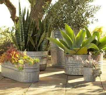 Eclectic Galvanized Metal Planters - eclectic - outdoor planters - Pottery Barn