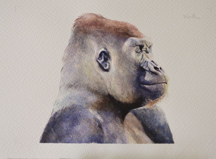 Watercolour on paper - 21x30 cm