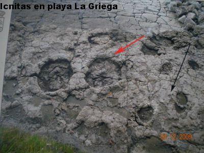 Glosariode Geológia, de Arqueología, de Arte