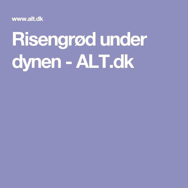 Risengrød under dynen - ALT.dk