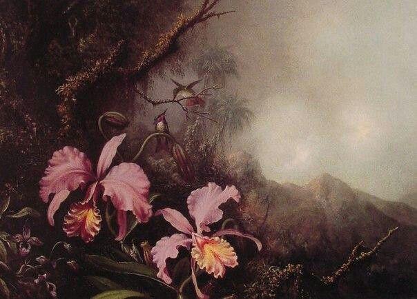 """Мартин Джонсон Хед """"Две орхидеи и колибри на фоне гор"""" 1870"""