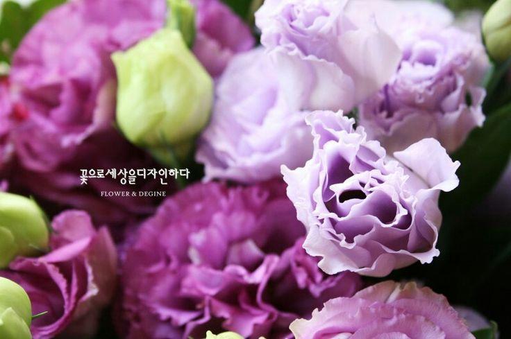 리시안샤스  꽃으로세상을디자인하다 모바일홈피 http://flowersede.modoo.at tel/070.4101.5701 kakao문의 http://plus.kakao.com/home@춘천꽃배달꽃세디