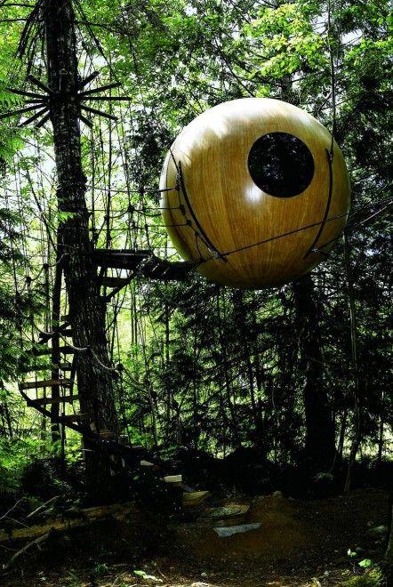 Le case sull'albero più belle del mondo