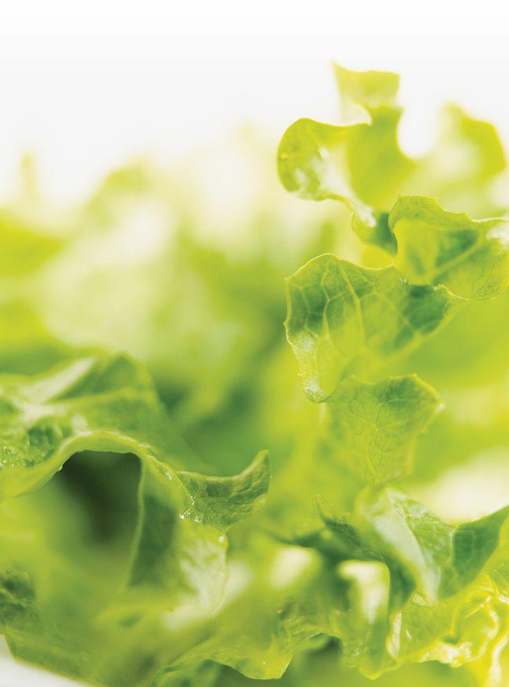 Recette de Ricardo : Salade croquante