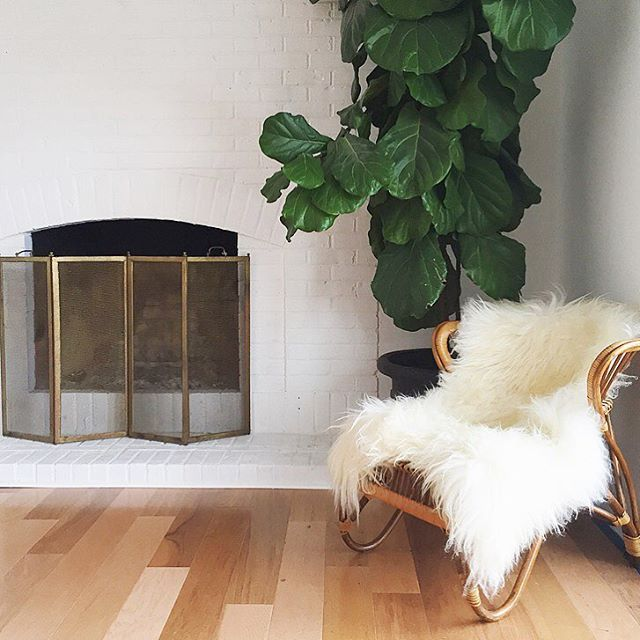 Best 25+ Midcentury fireplace screens ideas only on Pinterest ...
