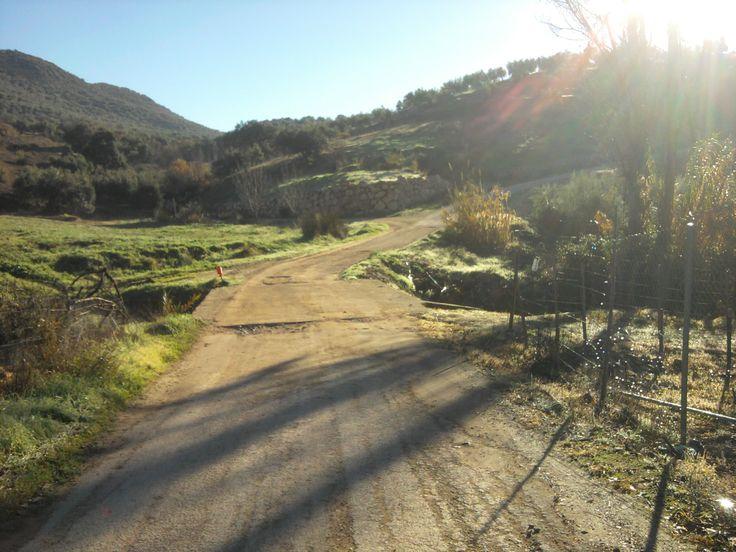 Carretera y puente en el río de la Virgen, hacia La Terrera y Cerro Rosado, en La Ribera, Fuensanta de Martos, Jaén.