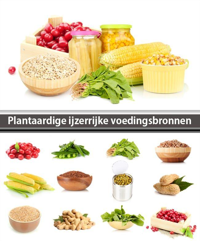 ijzerrijke voeding plantaardig