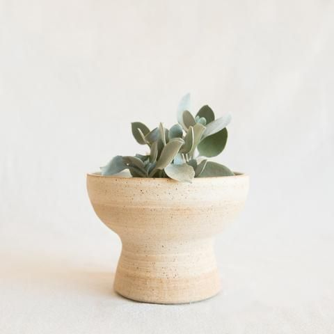 KB Pottery Pedestal Planter at General Store