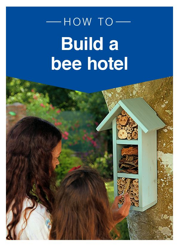 A bee hotel is a brilliant way to attract wildlife into your garden. You don't…