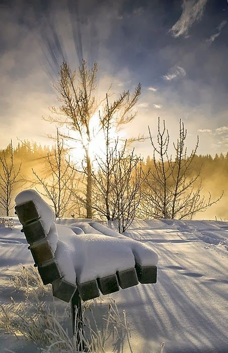 The sun shines on a snowy landscape