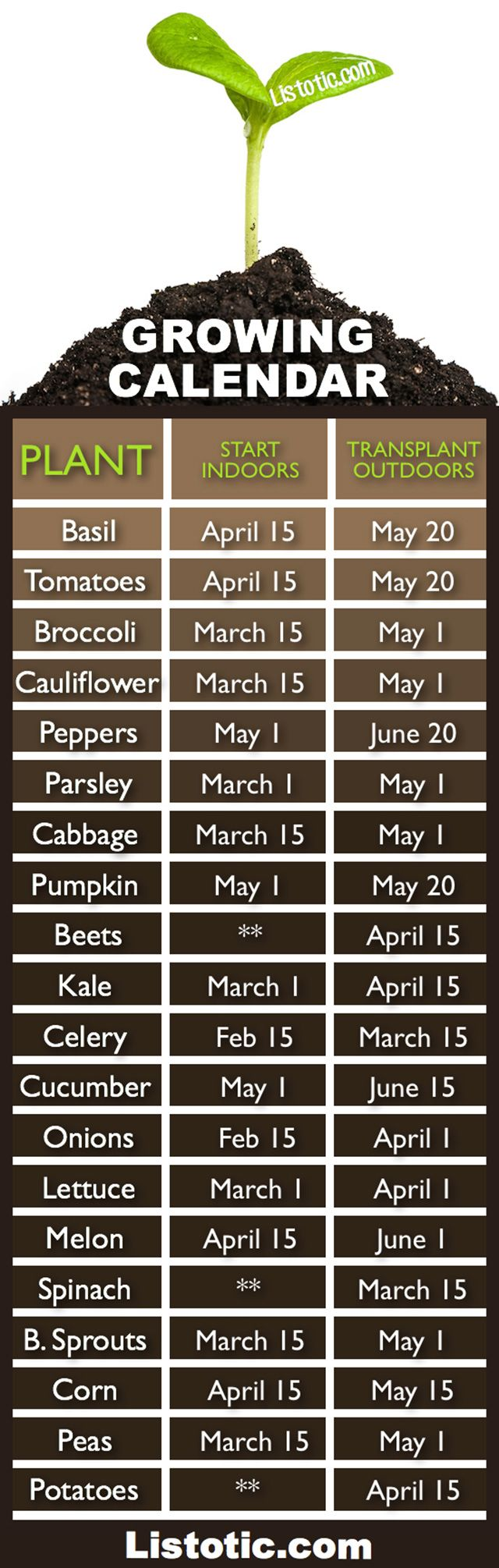 Everything You Need To Know About When To Plant Your Vegetable Garden