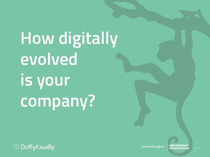 Assess now your #digital competence on our eight-point scale! Read more at http://duffy.agency/digital-native-company-evolution/