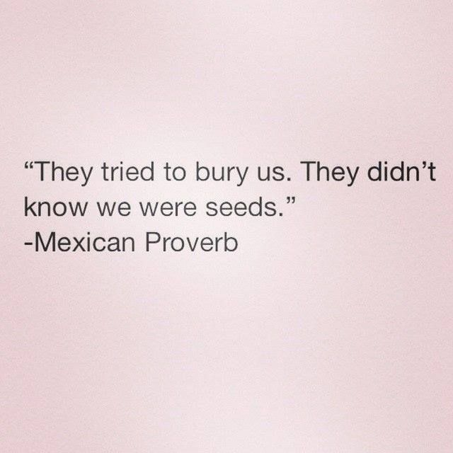 Be a Seed. From a great blog Laugh up My Sleeve on Wordpress.com