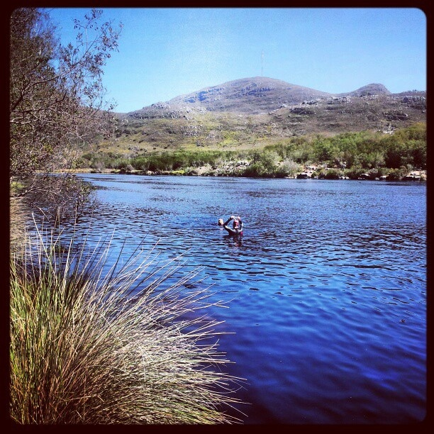 Silvermine Dam, Cape Town. Dog swimming heaven! by AfricanTours, via Flickr