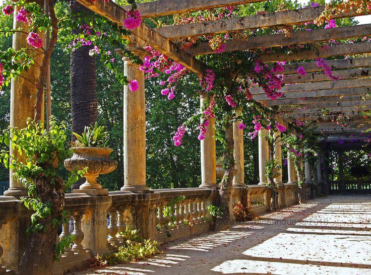 allthingseurope:  Aveiro, Portugal (by Rui Henriques)