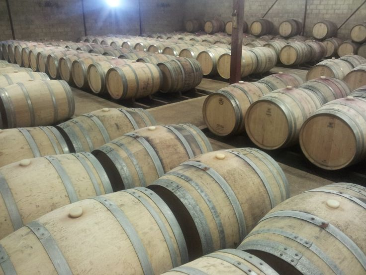 #PicardyWines Barrel room  (#RNAWA13)