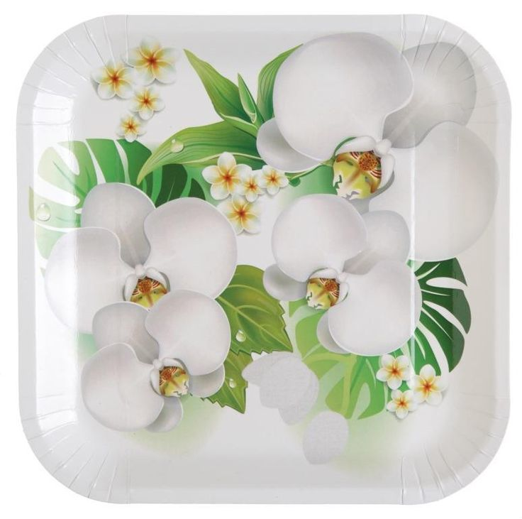 10 assiettes carton orchidée blanches et couleur carrées de 23 cm, plates plastifiées, décor orchidées blanches avec feuilles