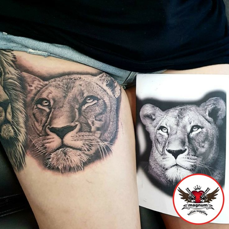 Who doesn't love this lioness piece? Tattoos by Gavin Underhill did this using #magnumtattoosupplies