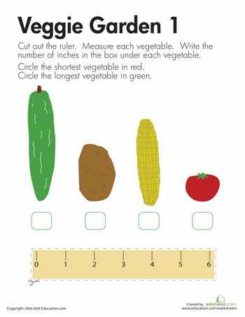 Worksheets: Measuring Length: Veggies-Maybe use real veggies (The Vegetables we eat-GGibbons)
