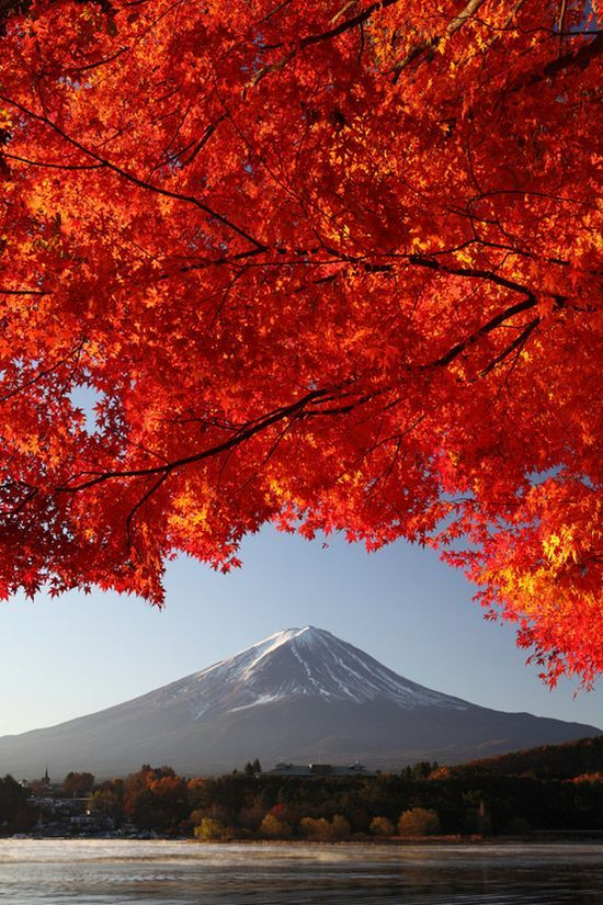 Mt. Fuji, Japan  ♥ ♥ www.paintingyouwithwords.com