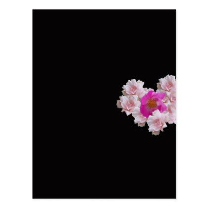 Many Heart Shaped Roses on Black Background Postcard - valentines day gifts gift idea diy customize special couple love