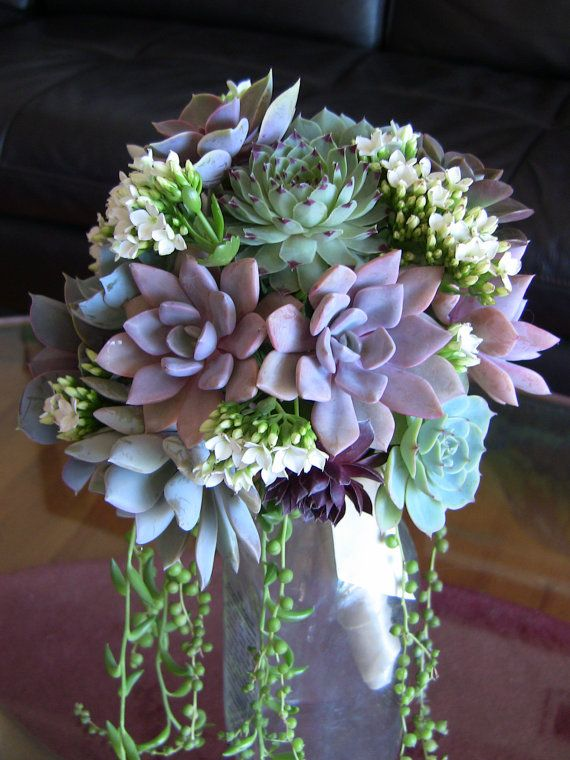 Custom orders are welcome. Please contact me with any questions or requests. Congratulations on your upcoming wedding!  We will ship your wedding bouquet Express Mail so it arrives quickly and safely. Succulents can last two weeks or longer without being replanted.  Succulently Urban works with succulent plants and specializes in weddings. We design bridal wedding bouquets, boutonnieres, corsages, hair combs, napkin rings, cake decorations and party favors. If you have questions or want to…