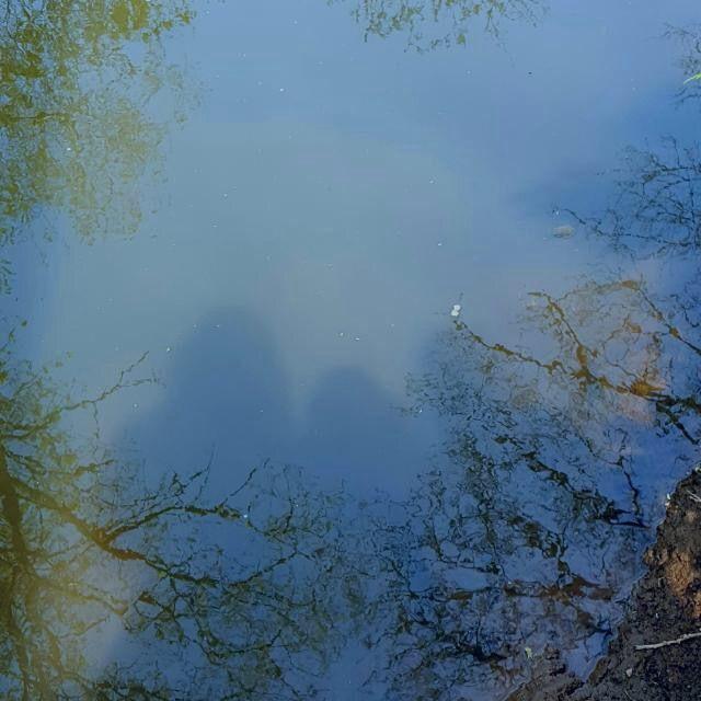 Woahhhhh river shadow