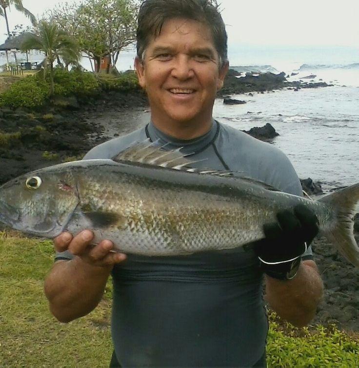 Fishing Store Big Island Hawaii S Tokunaga Store