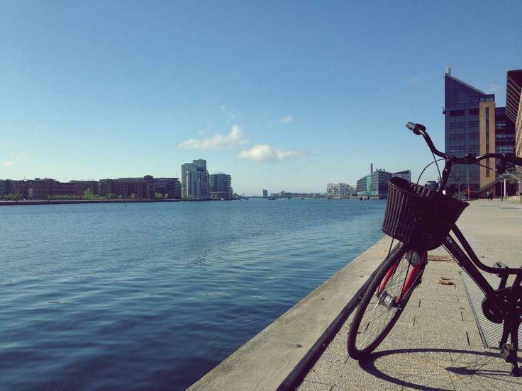 Ein guter Tag in Kopenhagen beginnt mit einem Mohnbrötchen. Mit dem Fahrrad die hippen Viertel auskundschaften. Und unbedingt Street Food in Papirøen probieren.