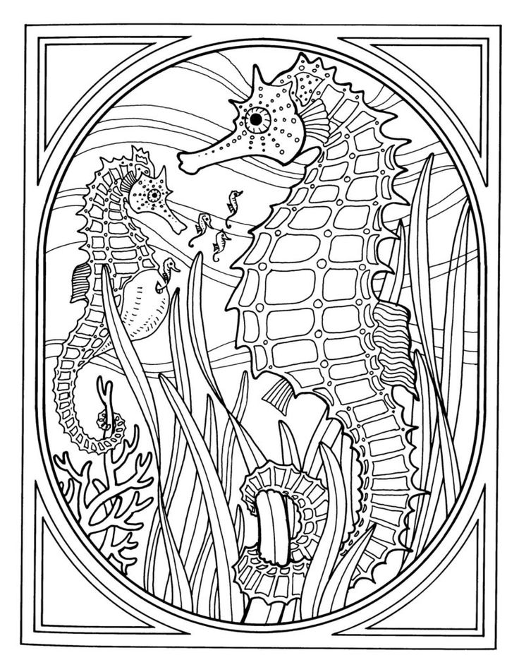 coloring pages exquisite ocean coloring pages for adults best photos of sea
