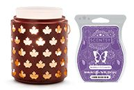 Home Party Businesses & Fun Direct Selling Company   Join Scentsy