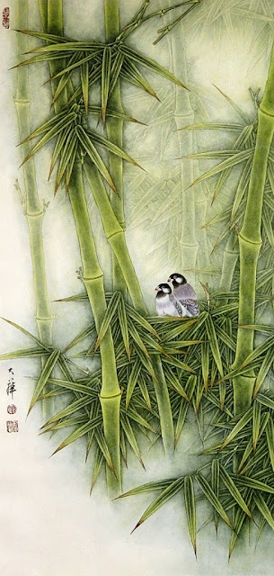 bamboo and birds