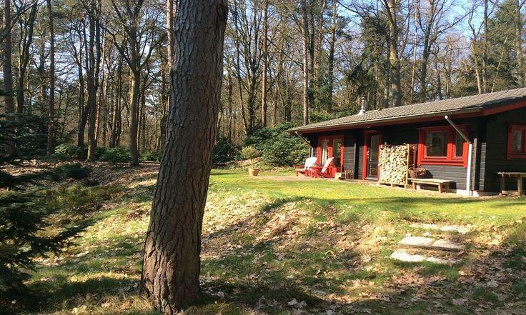 Natuurhuisje 31657 - vakantiehuis in Hulshorst