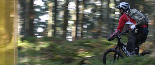 Sergey roadbike bike 15%