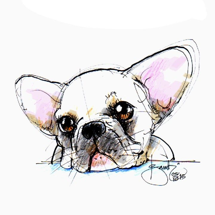 Special for @rhino_da_frenchie from #masbe #mas_be #doodling #doodles @inktoberindonesia #inktober #frenchie #doggy #dog #inktoberindonesia #inktoberid #sketch #sketsa #drawing #unyu_korea #Unyu2 #unyu #cute #karyamasbambi