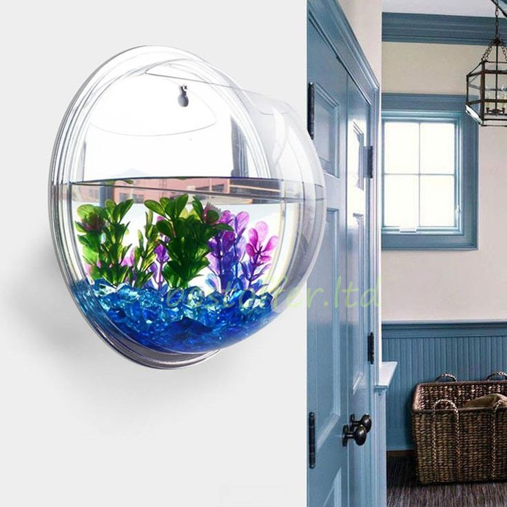 17 best ideas about fish tank wall on pinterest home aquarium amazing aquariums and fish tanks - Fish tank partition wall ...