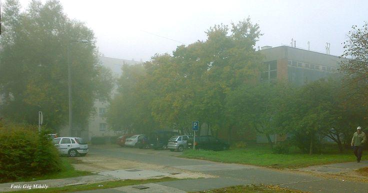 Őszi köd a lakótelepen