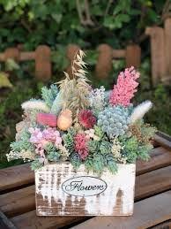 resultado de imagen para cuidado de las hortensias narcisos azaleas