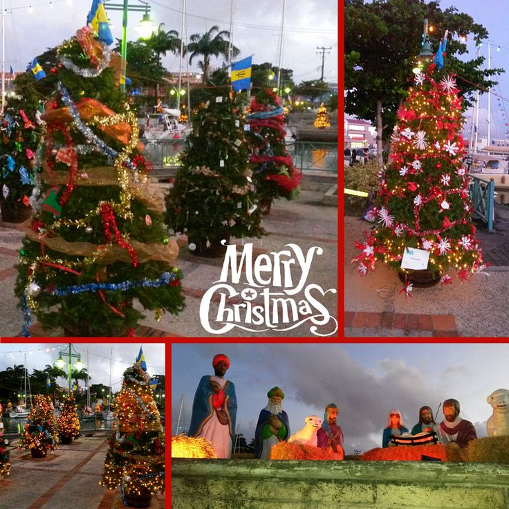 In Barbados for Christmas? Be sure to head into Bridgetown to enjoy all the wonderful Christmas trees!