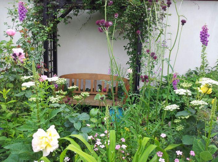 Idéer til at skabe et romantisk og vildt look i haven med skærmblomster