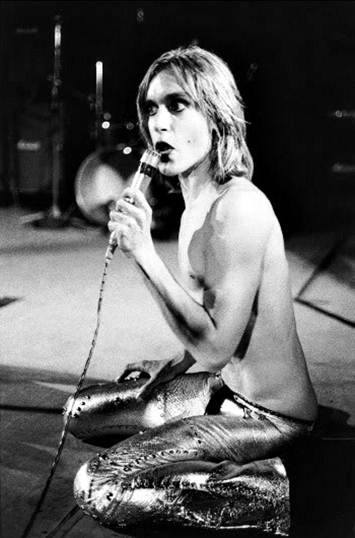 Tags: iggy pop, the stooges, 70s, glam rock, proto-punk, punk, rock, shirtless, sexy, live,