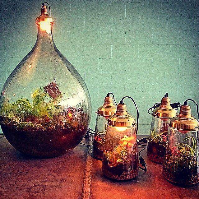 Spruitje Amsterdam lamp - laris