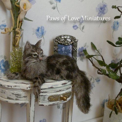 462 Best Miniature Cats & Dogs And Friends. Images On