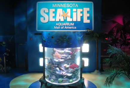 Sea Life Minnesota Aquarium at Mall of America Monday – Thursday: 10:00am – 7:30pm  Friday: 10:00am – 8:30pm  Saturday: 9:30am – 8:30pm  Sunday: 10:00am – 6:30pm  2 and under free, 3-12 year olds are 16$ and adults, $20.