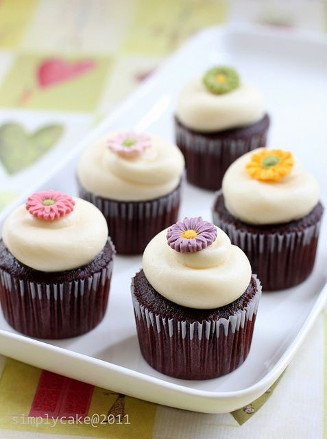Daisy Cupcakes by Simply Cupcake, via Flickr
