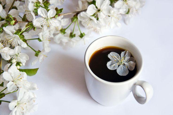 Яблочным, доброе утро хорошего понедельника картинки красивые необычные