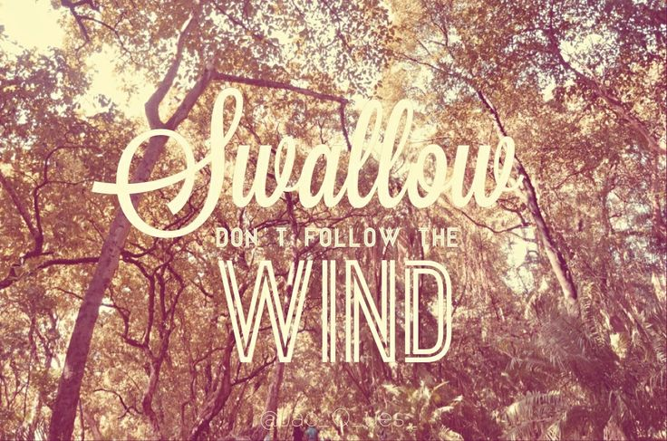 Choose your destiny, don't follow the wind