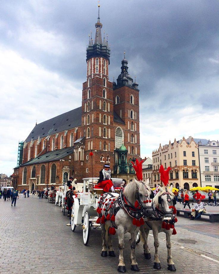 byzuch we Krakowie to je zawdy dobro idyjo!  - #krakow #kraków #rynekglowny #belekaj #godej #rajza #polska #poland #mainsquare #instakrakow #cracow #cracovia #polishaddict #zwiedzamy #zwiedzanie #podróże #podróż #blogpodrozniczy #blogipodroznicze #blogtroterzy #podroze #wakacje #jesień