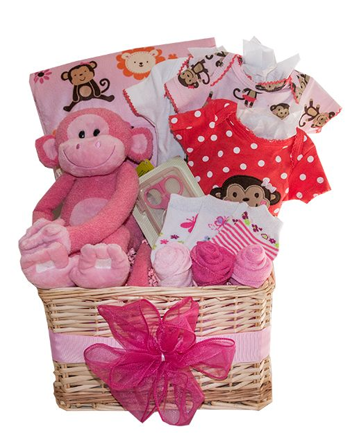 40 best baby gift baskets toronto images on pinterest baby gift baby girl monkey around baby gift basket toronto canada negle Gallery
